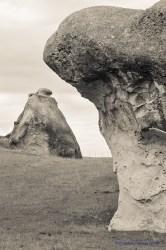 744_elephant_rock