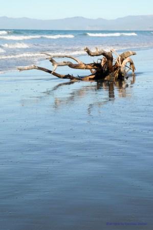 1295_Woodend_Beach