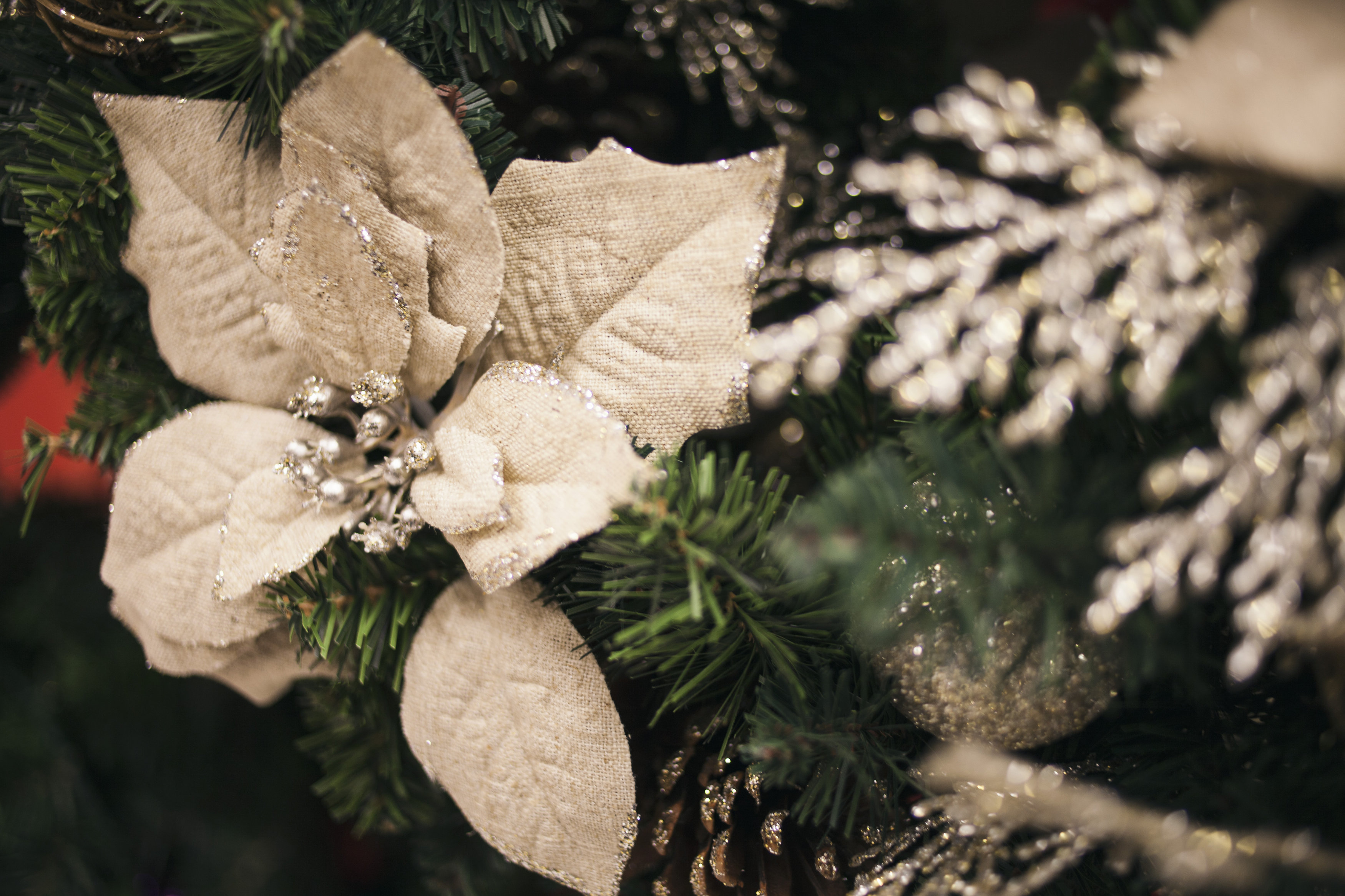 Tips for Preventing Relapse During the Holidays