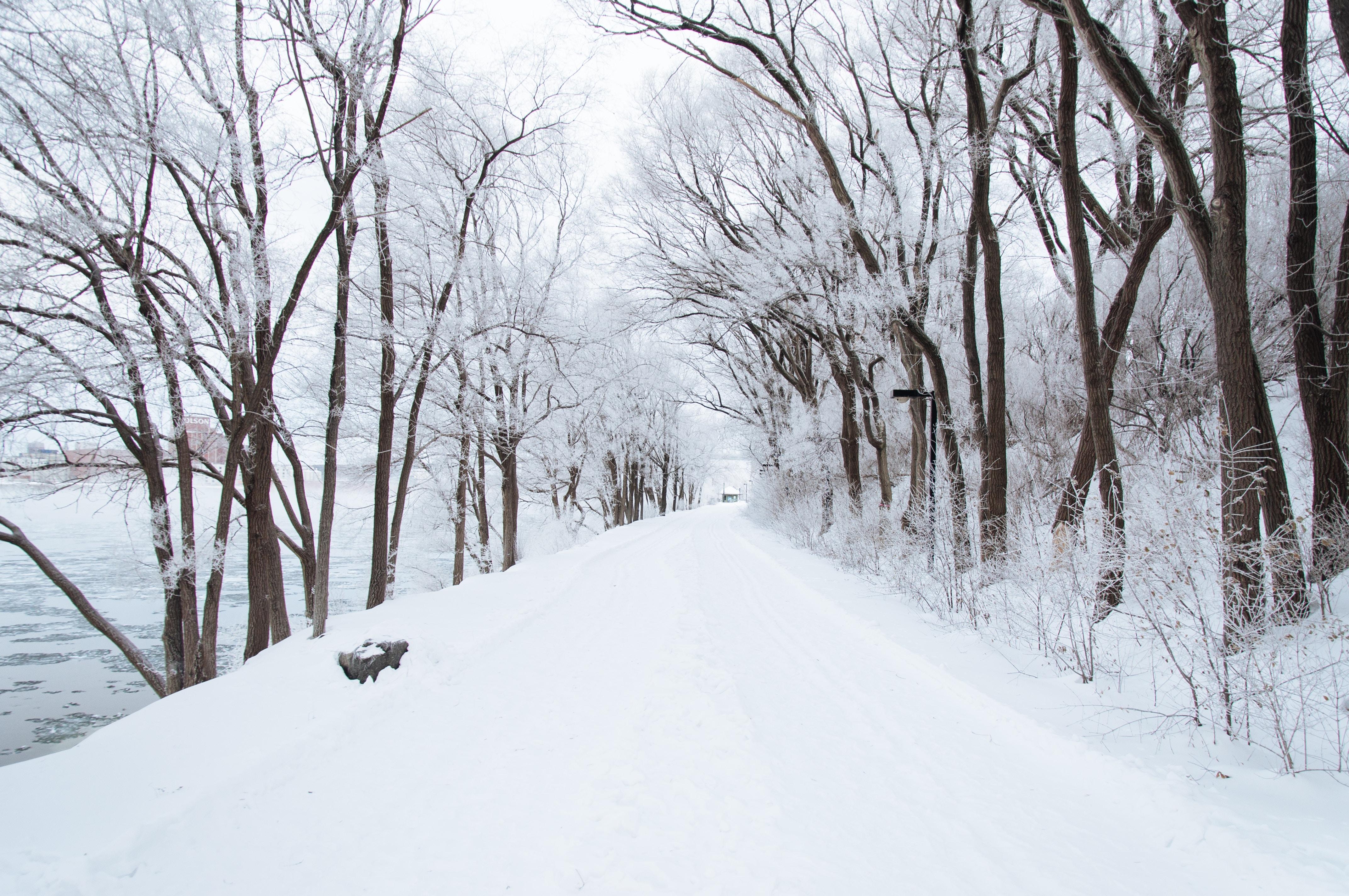 Do You Struggle With Seasonal Affective Disorder?
