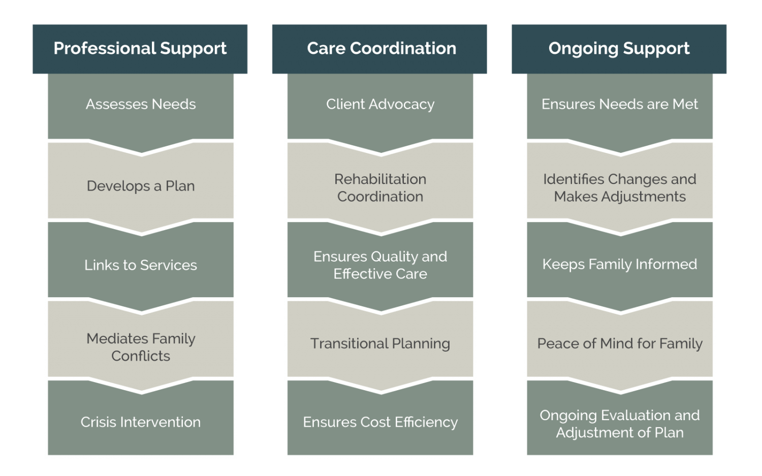 case manager infographic