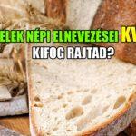 A Kvízmester.comonmegjelent a Hétköznapi ételek népi elnevezései KVÍZ – Kifog rajtad?.