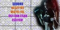 Sudoku kesztyűben