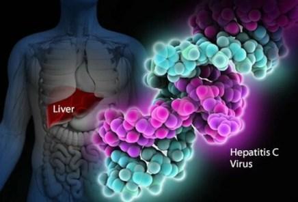 hepatitisC.jpg