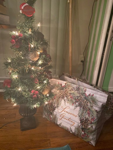 Christmas_Tree_and_my_only_present.jpg
