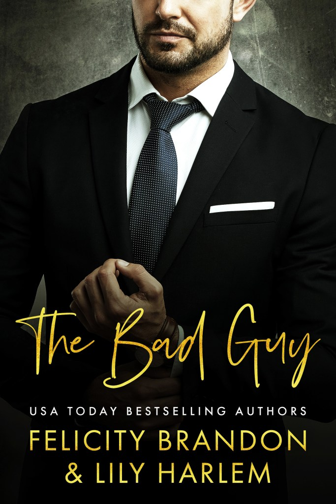 Book Cover: The Bad Guy