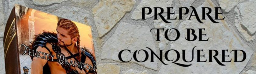 cropped-the-vikings-conquest-pre-release-banner.jpg