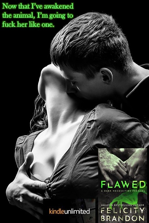 Flawed Teaser 2 w cover cropped