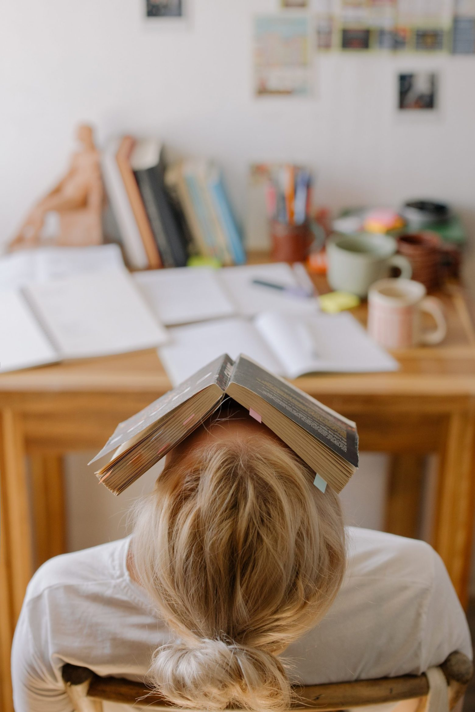 You've Finished a Novel, Now What?