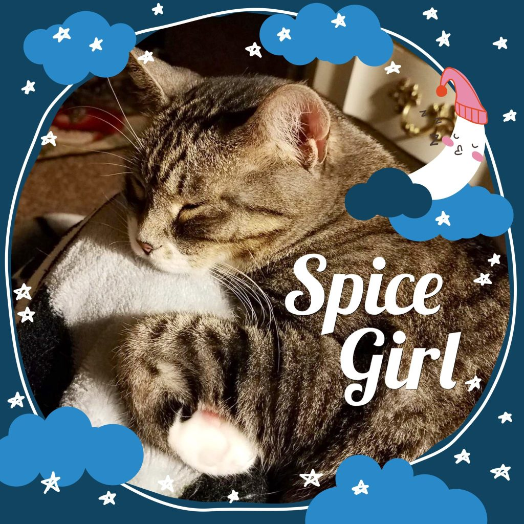 Spicey