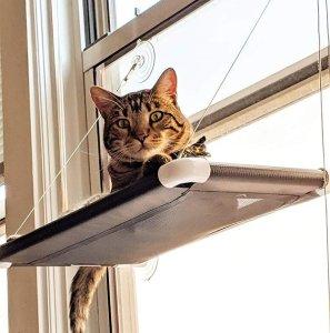 Kitty Kot Large Size