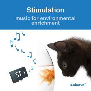 ICalmCat Stimulation Music