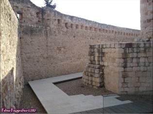 110 - Zamora5