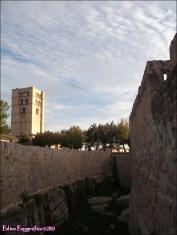 110v - Zamora2