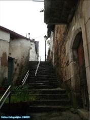 31v - Viana do Bolo2