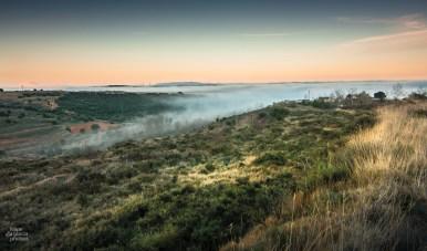fog comes