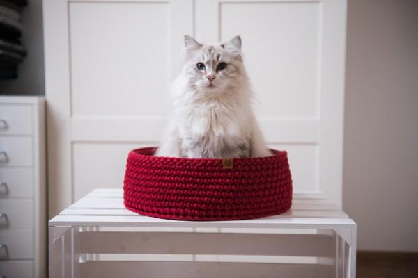 Legowisko dla kota bordowe