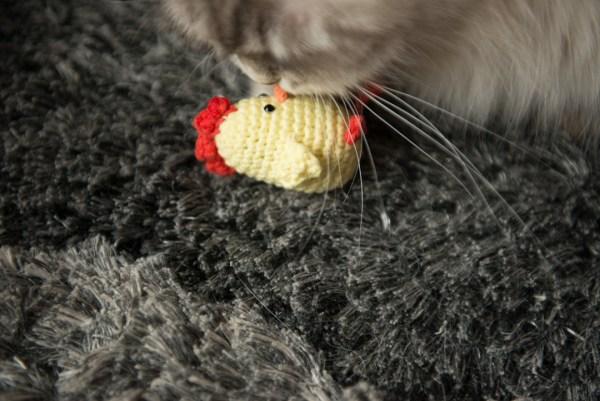 zabawka dla kota kurczak z walerianą