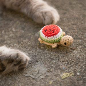 zabawka dla kota żółw arbuz z kocimiętką