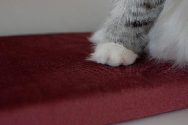 legowisko dla kota na parapet