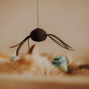 wędka dla kota pająk - zdjęcie Monika Małek