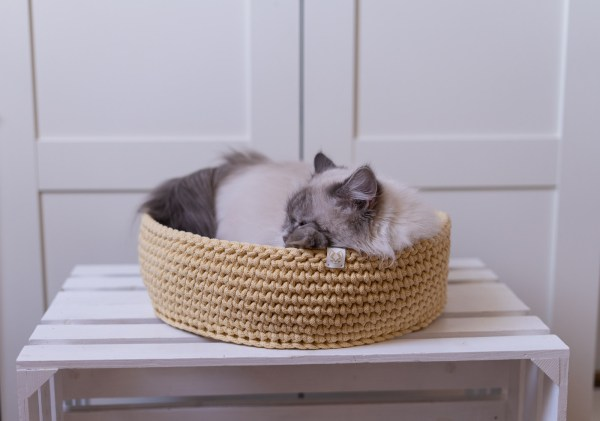 legowiska dla kota