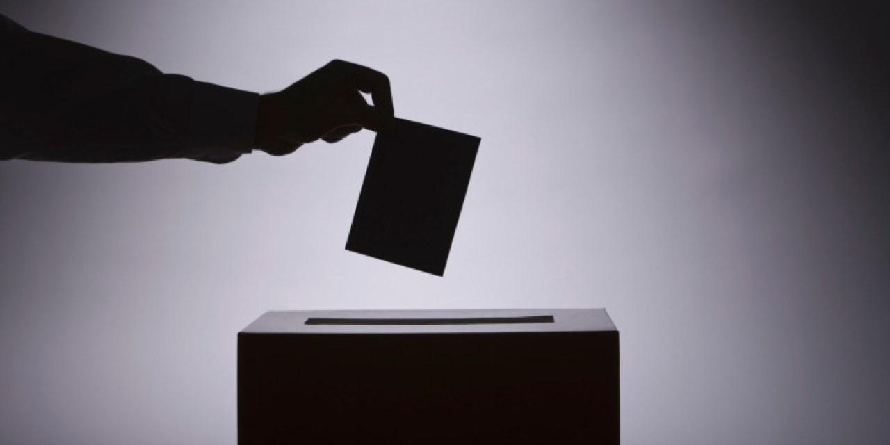 La Familia Vicenciana ante las elecciones generales de cualquier país (1ª parte)