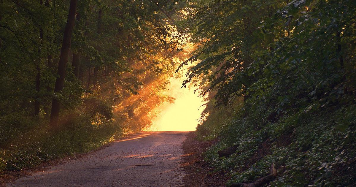 Aprovechar el instante de luz (Aviso para caminantes)