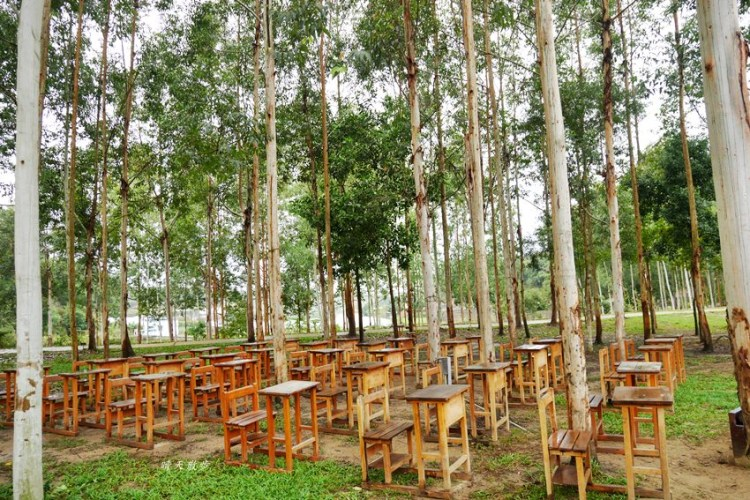 龍昇社區桉心園生態園區~結合生態教育、食農教育、DIY體驗、低碳風味餐的半日遊 社區營造新亮點(苗栗造橋)