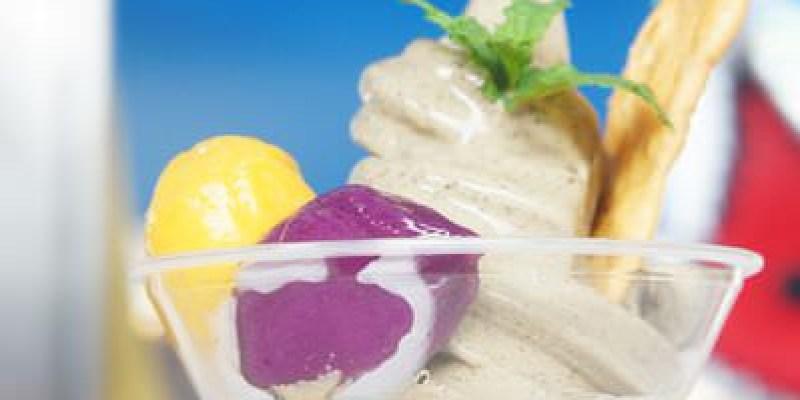 [南投美食]烏龍夯冰~南投竹山冰淇淋好夯,連皇帝都賣起烏龍冰淇淋!