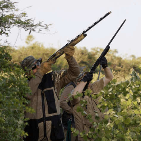 Fellowship Adventures Bolivia Dove Hunting Adventure