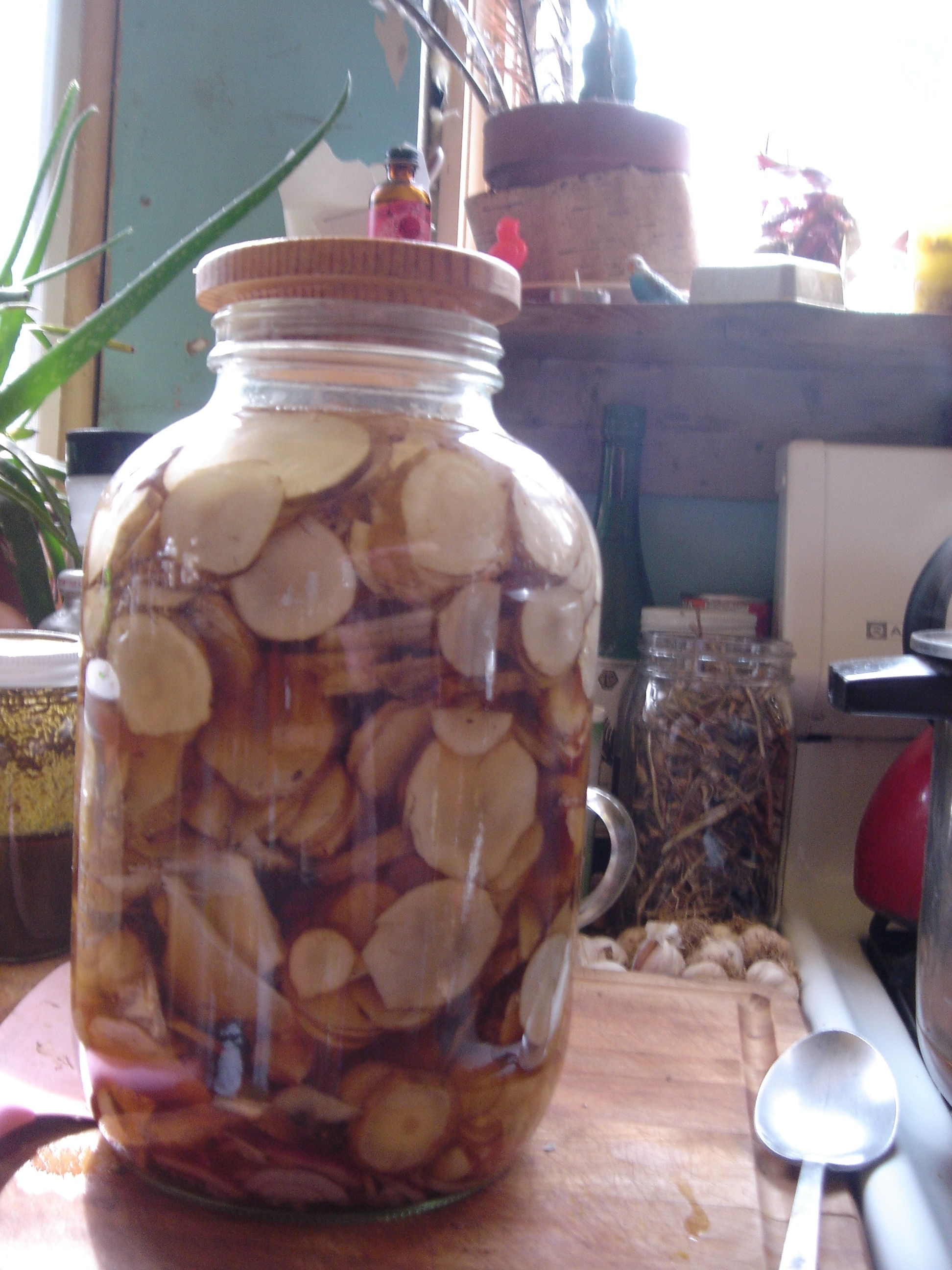 pickled sunchokes in a jar