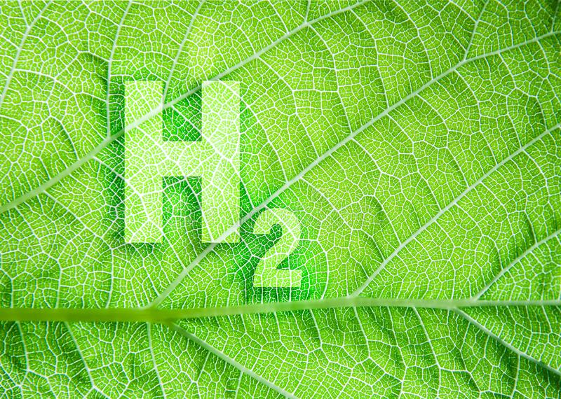 green-hydrogen-energy-symbol-leaf-texture-ecological-concept-sustainable-alternative-to-fossil-fuels-211499487