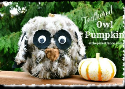 Feathered Owl Pumpkin