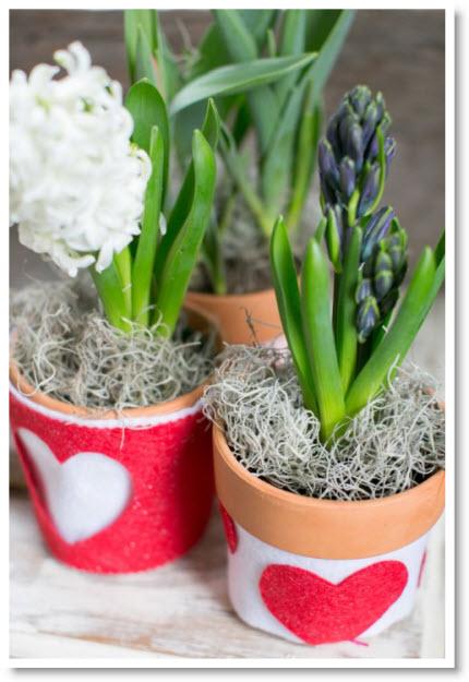 DIY Valentine Plant Cozy