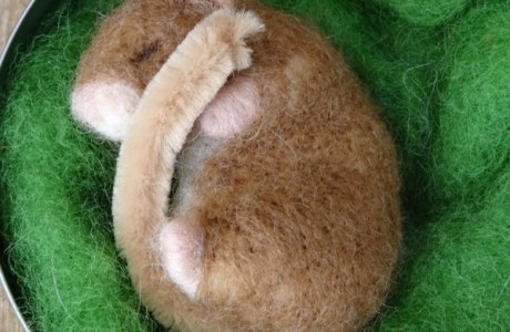 Dormouse Needle Felt Kit