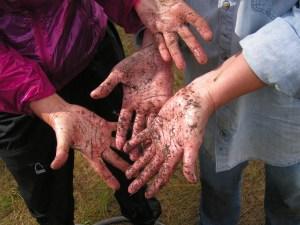 Clean Hands?