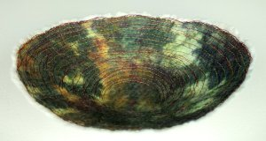 rustic nuno and stitch bowl - small image