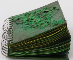 Green Studies Notebook End View