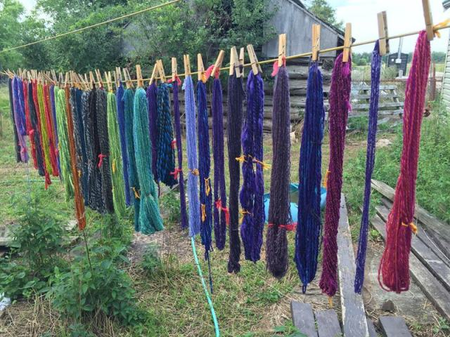 Yarn washed and hanging