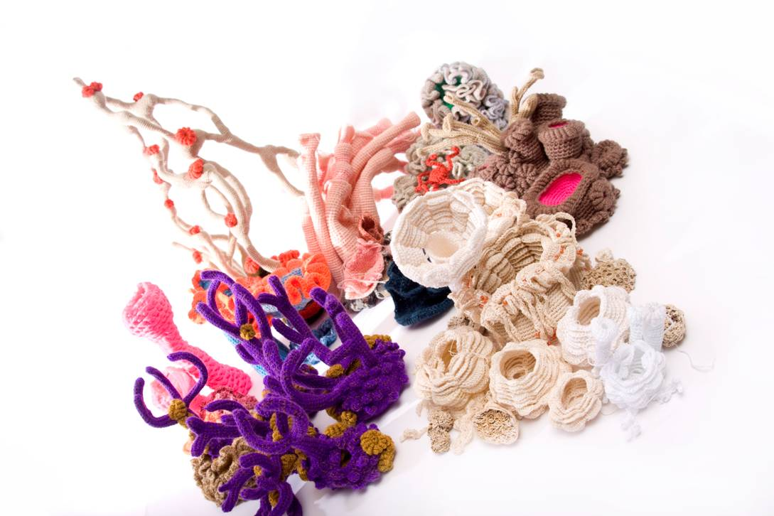 Crochet Coral Reef made by Sue Bamford