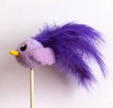 Floofy Bird