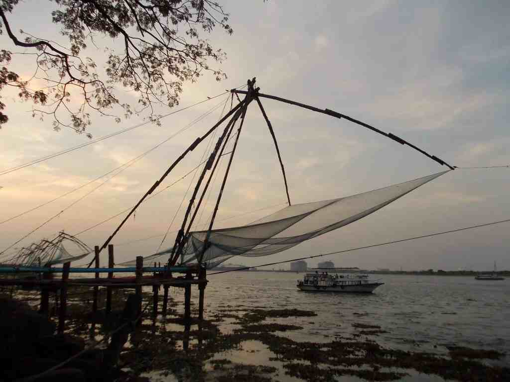 Fresh fish is caught in huge nets each day