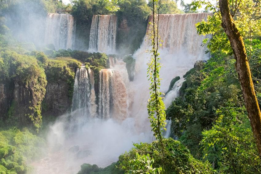 Iguazu Falls National Park, Argentina The Wildlife diaries