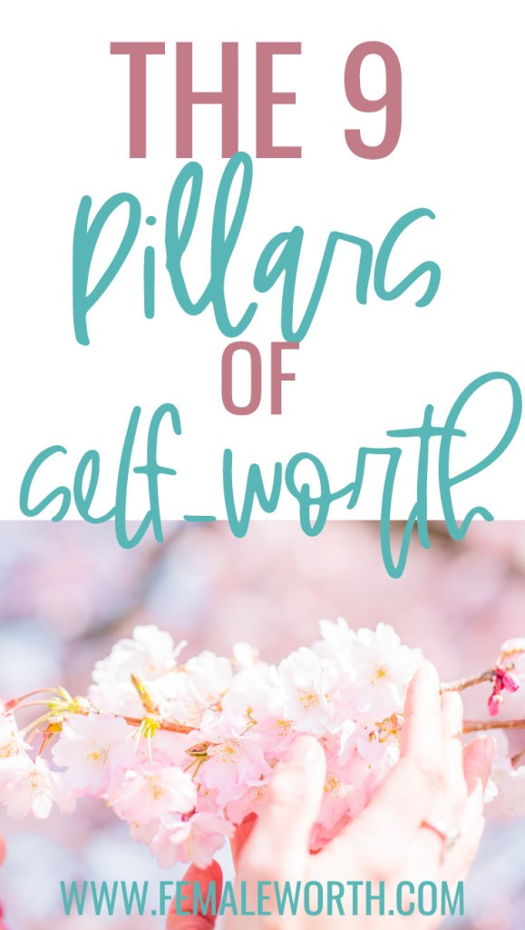 the 9 pillars of self-worth