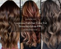 Gorgeous fall hair color for brunettes ideas (100)