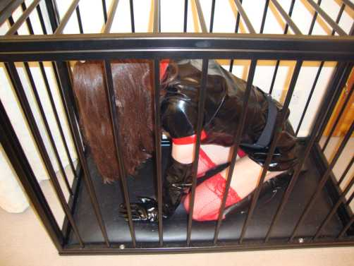 sisss humiliation story, locked in a cage