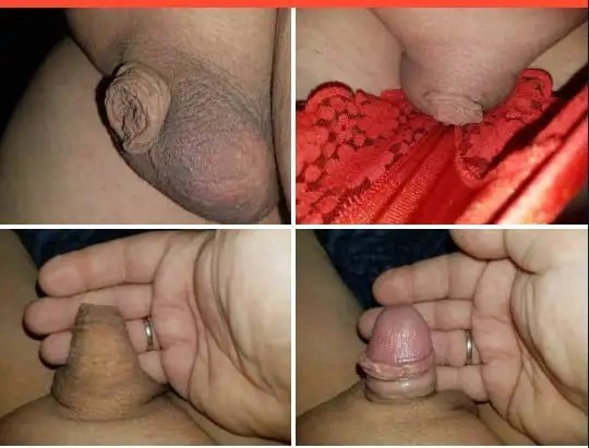 little dick pictures