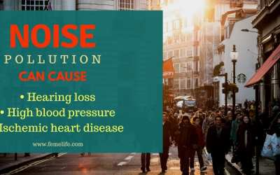 Noise pollution : Health Hazards