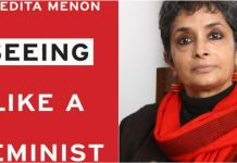 Book Review: Seeing Like A Feminist By Nivedita Menon